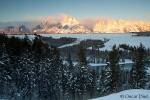 Gallery: Grand Teton National Park below zero
